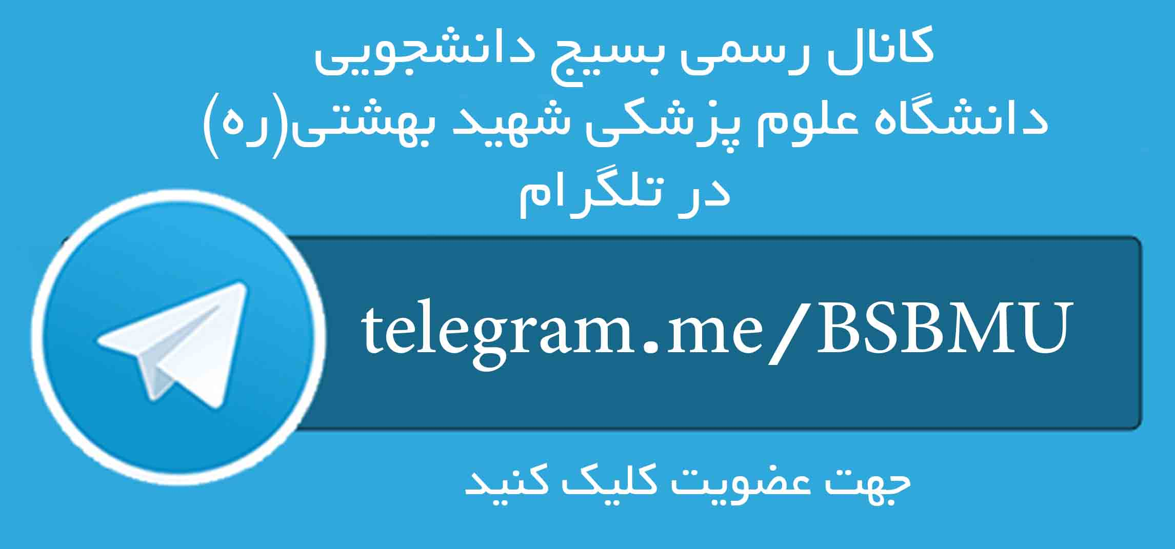 telegram-theme copy